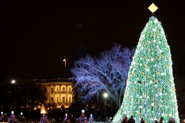 national christmas tree lighting 2010 - Washington Dc Christmas Tree